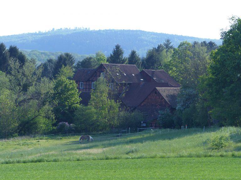 Bergmühle Mai 2016 - 1